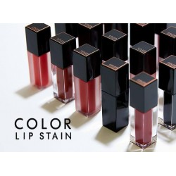 Son Môi color lip stain matte fluid a'pieu